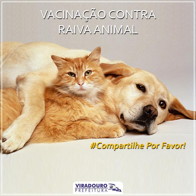 INFORME TÉCNICO - VACINAÇÃO CONTRA RAIVA ANIMAL